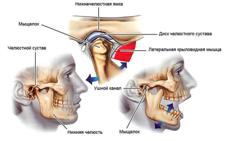 Изображение - Диск челюстного сустава 1329_uprazhneniya-dlya-lecheniya-artroza-vnchs